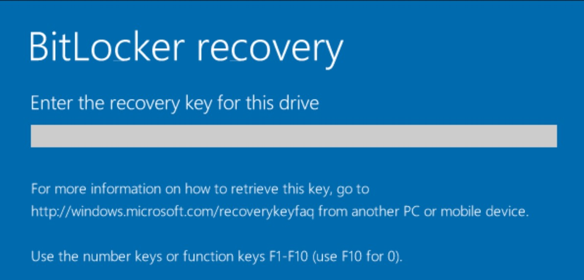 Microsoft BitLocker software