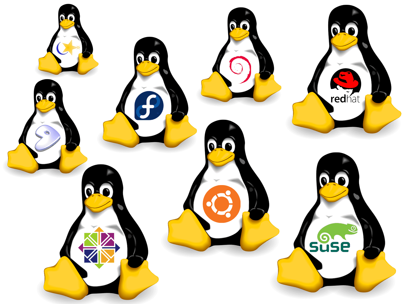install software Linux